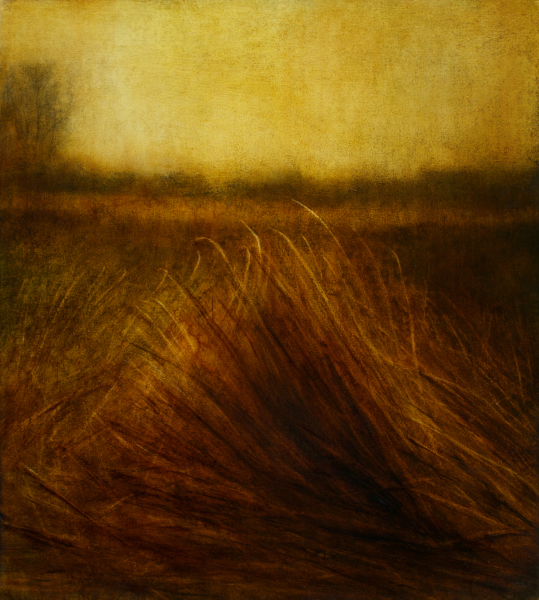 "Maya Kulenovic: GRASSLANDS / PASSING 2013, oil on canvas, 30"" x 26"" (76cm x 66cm). 'Land' Series; 'Grasslands' Series."