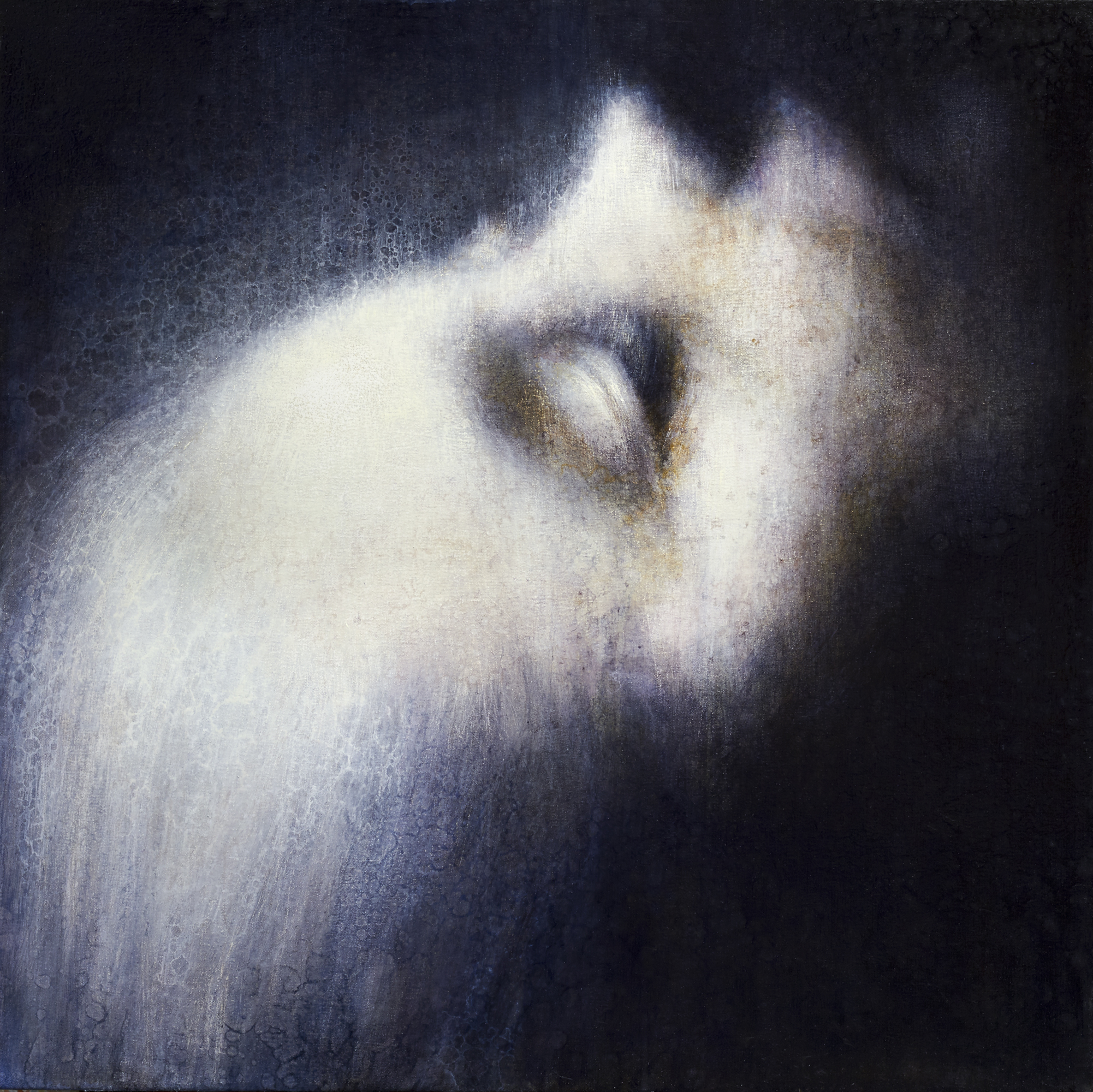 "Maya Kulenovic: OPIATE, 2011- 2012, oil on canvas, 36"" x 36"" (91.5cm x 91.5cm). 'Faces' Series."