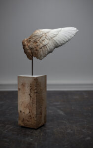 Contemporary art work - Sculpture by Maya Kulenovic. WING / SAND (Var. #2), 2021, polymerized concrete blend, sand, iron oxide. Realistic sculpture of a wing, damaged as if by erosion to expose sand/clay material under pristine white surface.
